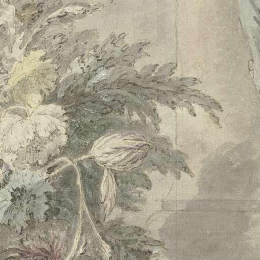 Vaas met bloemen, Jan van Huysum, 1692 - 1749 - Jan van Huysum-Collected Works of Karol de Witt - All Rijksstudio's - Rijksstudio - Rijksmuseum