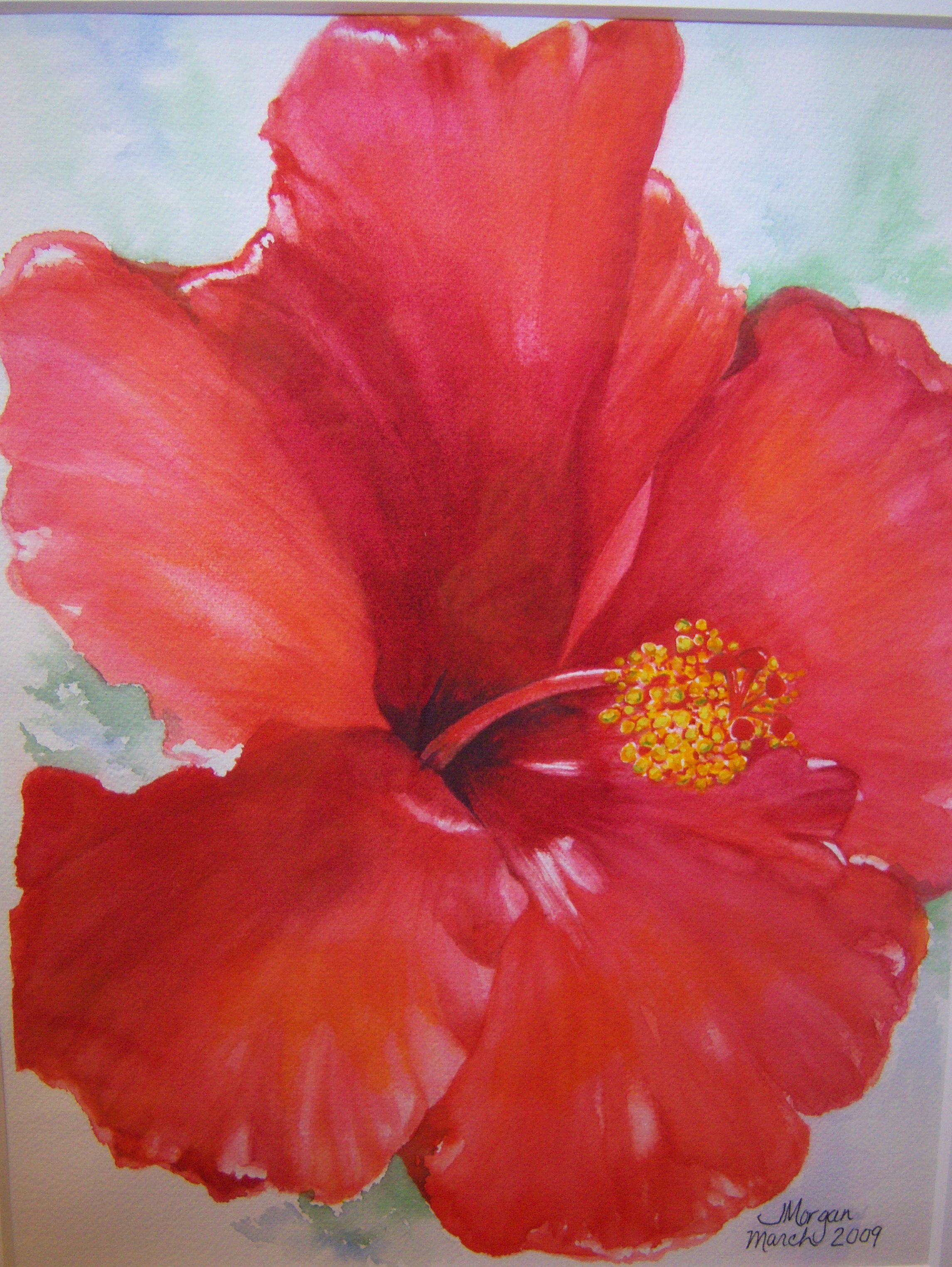 Hibiscus Watercolor Flower Painting Watercolor Flowers Small