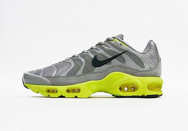 kids nike air max plus tn wholesaler licenses and inspections