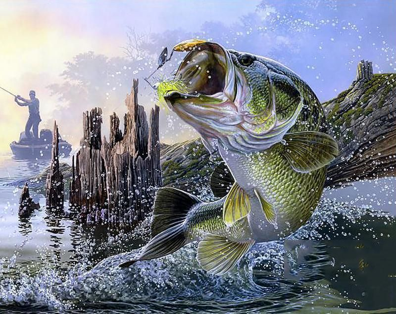 Big Catch Fish Diamond Painting Fish Wallpaper Fish Painting Fish Art