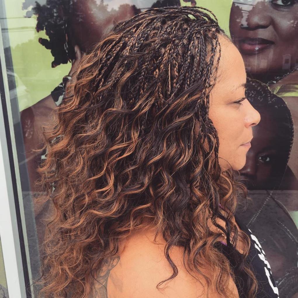 Wavy tree braids with highlights braidedhairstyles braided