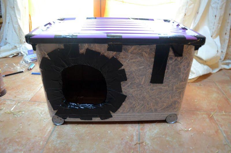 la chambre abris pour chat des rues animals pinterest abri pour chat refuges et rues. Black Bedroom Furniture Sets. Home Design Ideas
