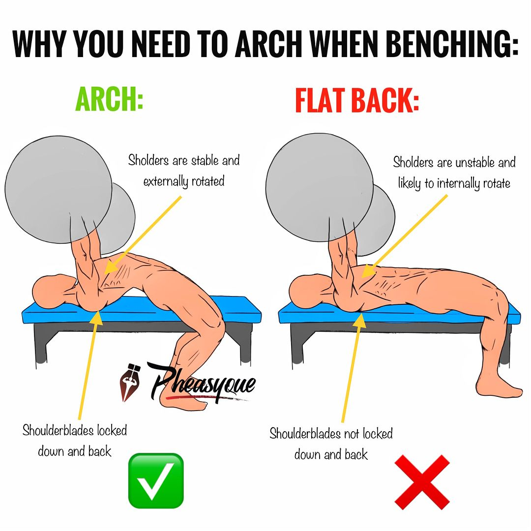 Why You Need To Arch When Benching After A Super Extensive Post Rampage On Shoulders I T Weight Training Workouts Gym Workout Tips Bodybuilding Workouts