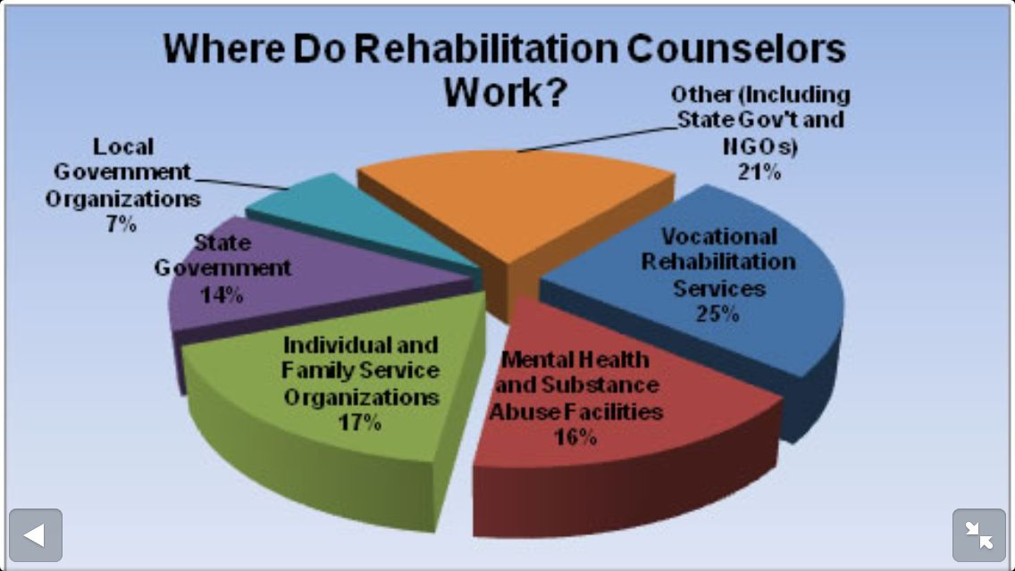 Pin on Rehabilitation Counseling