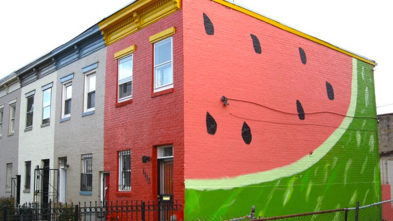 7 Outdoor Murals In D.C. Youu0027ll Want To Instagram Immediately Part 44