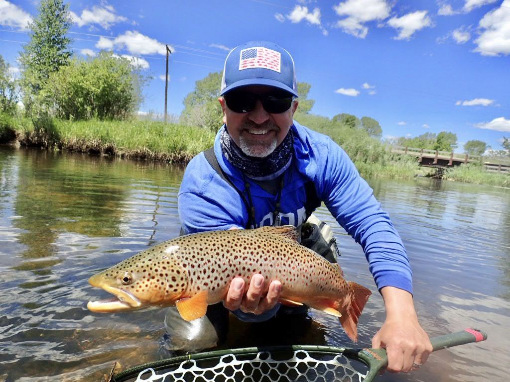 Fly Fishing Brown Trout In Wyoming Fly Fishing Brown Trout Fish