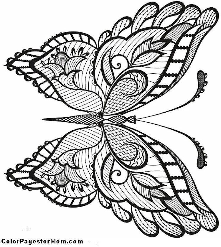 Zentangle / Doodles Coloring Image....Beautiful!!! | Adult Coloring ...