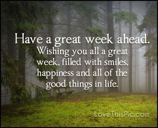Have A Great Week Ahead   Beautiful morning quotes, New month quotes, Good  morning quotes