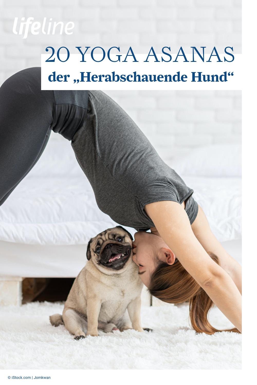 Frauen kennenlernen mit hund