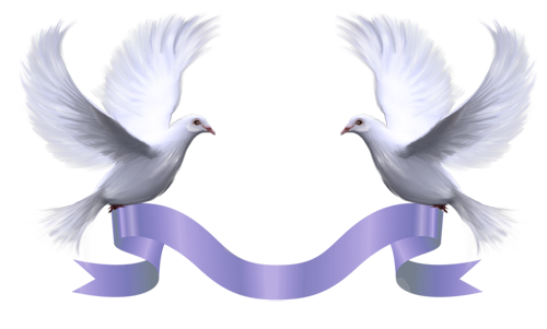 DesignerScraps Pigeons. Wedding doves, Wedding blessing