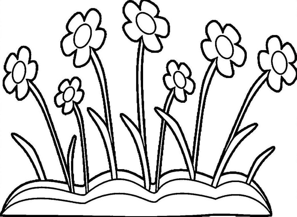 Gambar Bunga Hitam Putih Yang Indah Bunga, Gambar, Warna