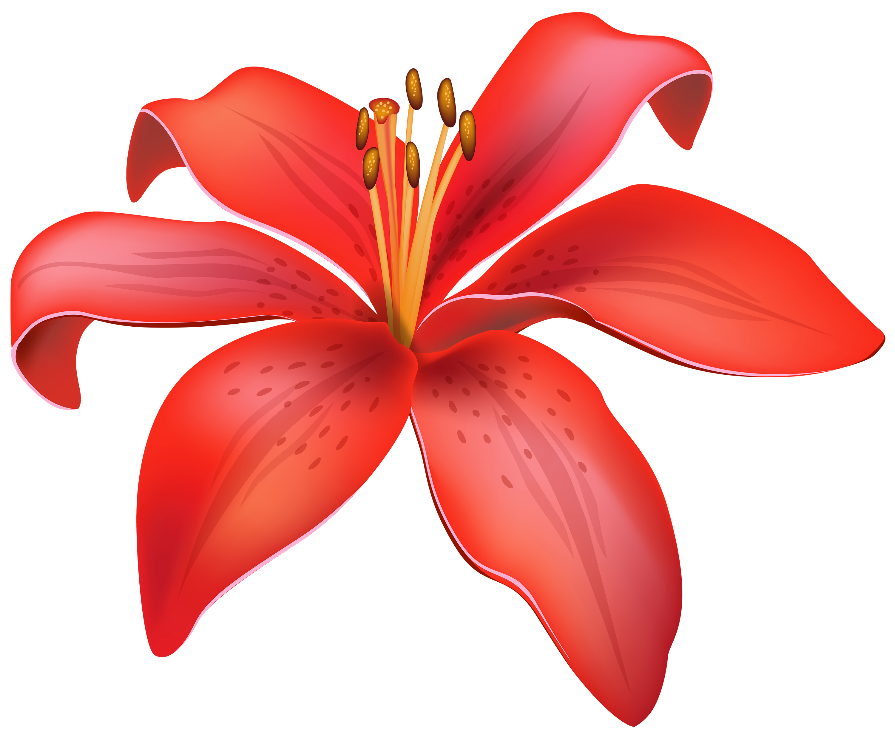 CLIPART FLOWERS | Red Lily Flower PNG Clipart - Best WEB ...