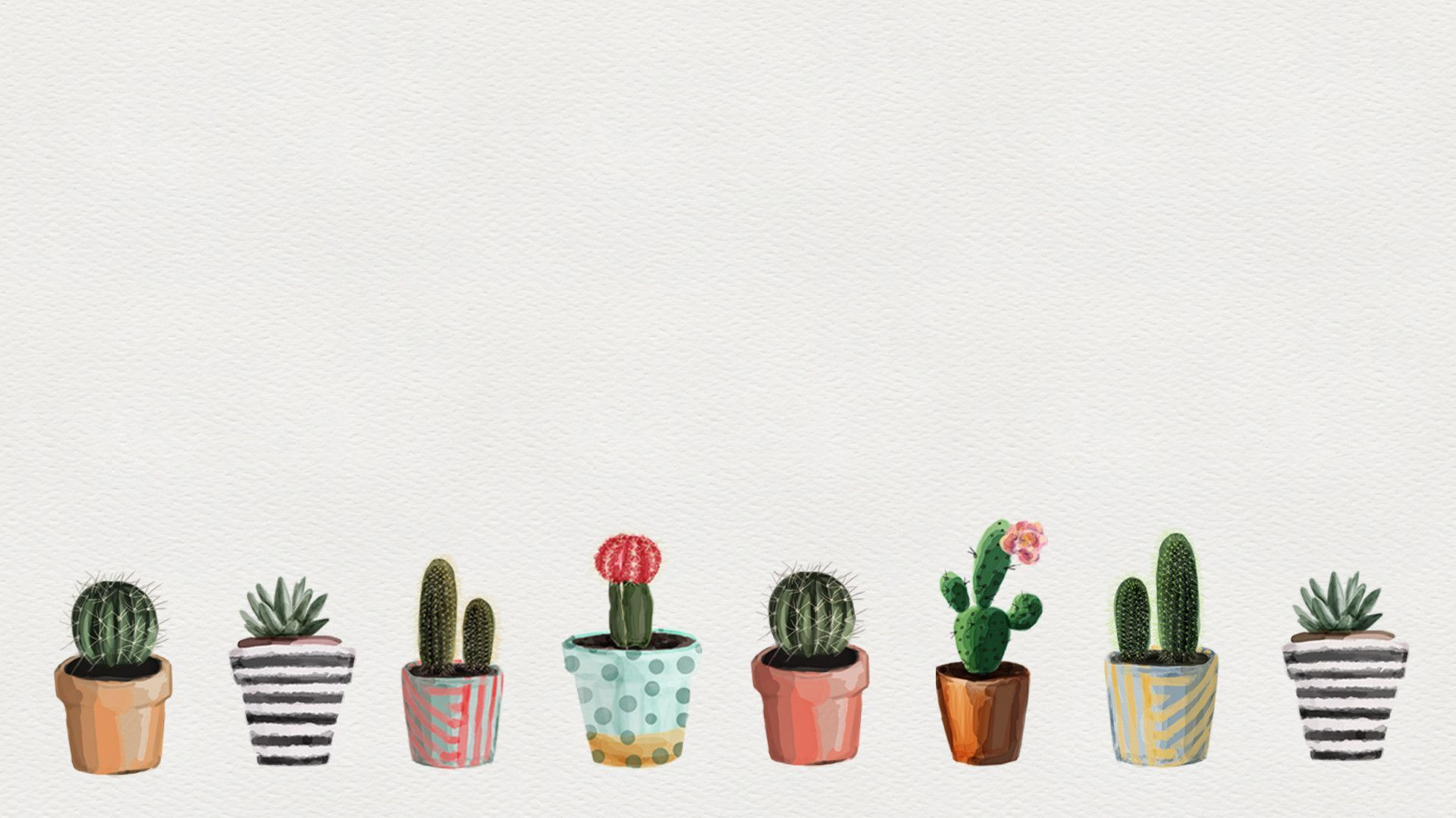 Aesthetic Succulents Wallpapers Top Free Aesthetic Succulents Backgrounds Wallpaperaccess Succulents Wallpaper Cactus Backgrounds Plant Wallpaper