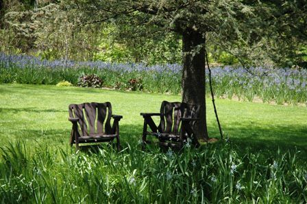 plant combination-power point 017.jpg-chairs under trees at chanticleer