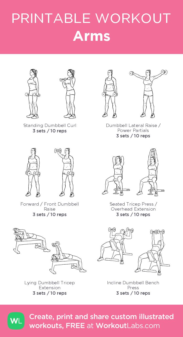 Arms · WorkoutLabs Fit        Arms · WorkoutLabs Fit,strong  Arms–my custom exercise plan created a...