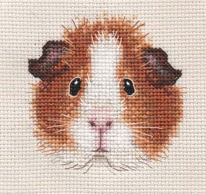 Tan Guinea Pig Complete Counted Cross Stitch Kit Exclusive