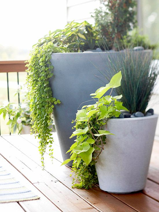 Tips For Using Planters In Your Yard With Images Patio