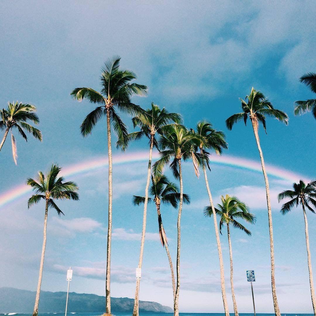 Н•¡ð•šð•Ÿð•¥ð•–𝕣𝕖𝕤𝕥 Н•'𝕟𝕚𝕤𝕒𝕞𝕜𝕨𝕒𝕟𝕒𝕫𝕚 Beach Trip Palm Trees Beach Travel Checklist