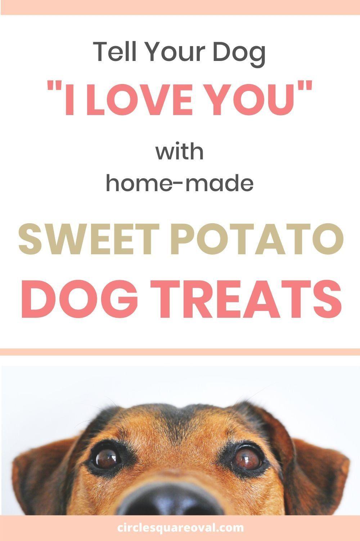 Homemade Sweet Potato Dog Chews Sweet Potatoes For Dogs Sweet Potato Dog Chews Dog Chews