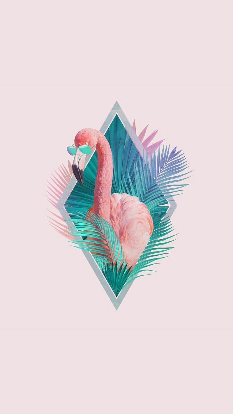 Aesthetic Pict Flamingo Wallpaper Summer Wallpaper Wallpaper Backgrounds Lock screen iphone 7 flamingo wallpaper