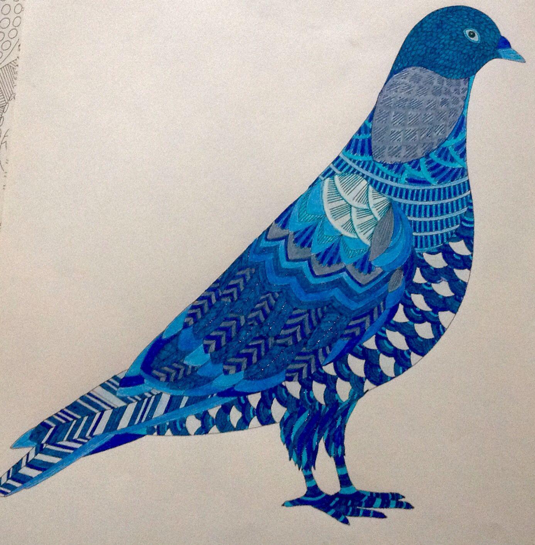Color me draw me animal kingdom book - Millie Marotta Dierenrijk Kleurboek Blauwe Duif Millie Marotta Dierenrijk Kleurboek Blauwe Duif Animal Kingdom Color Me Draw
