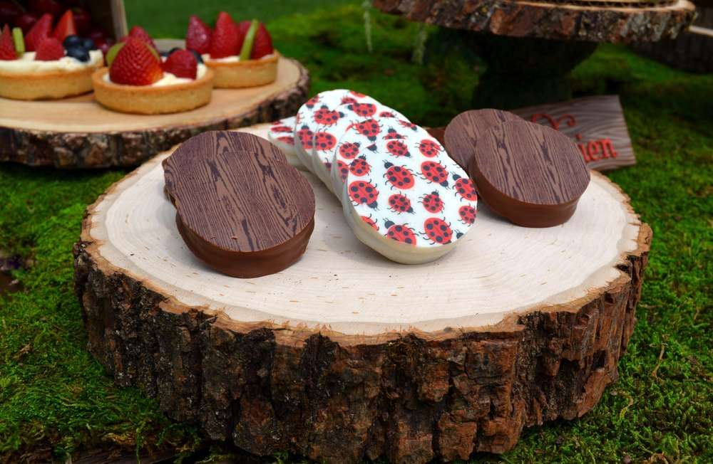 Enchanted Forest Birthday Party Ideas Chocolate Covered Oreos