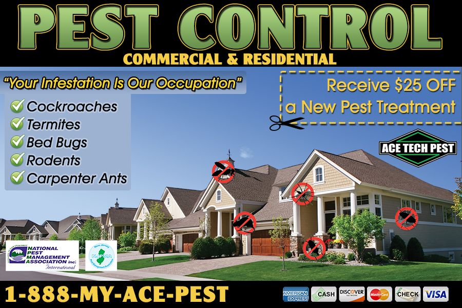 Commercial pest control company by httpavonpestcontrol commercial pest control company by httpavonpestcontrol solutioingenieria Images
