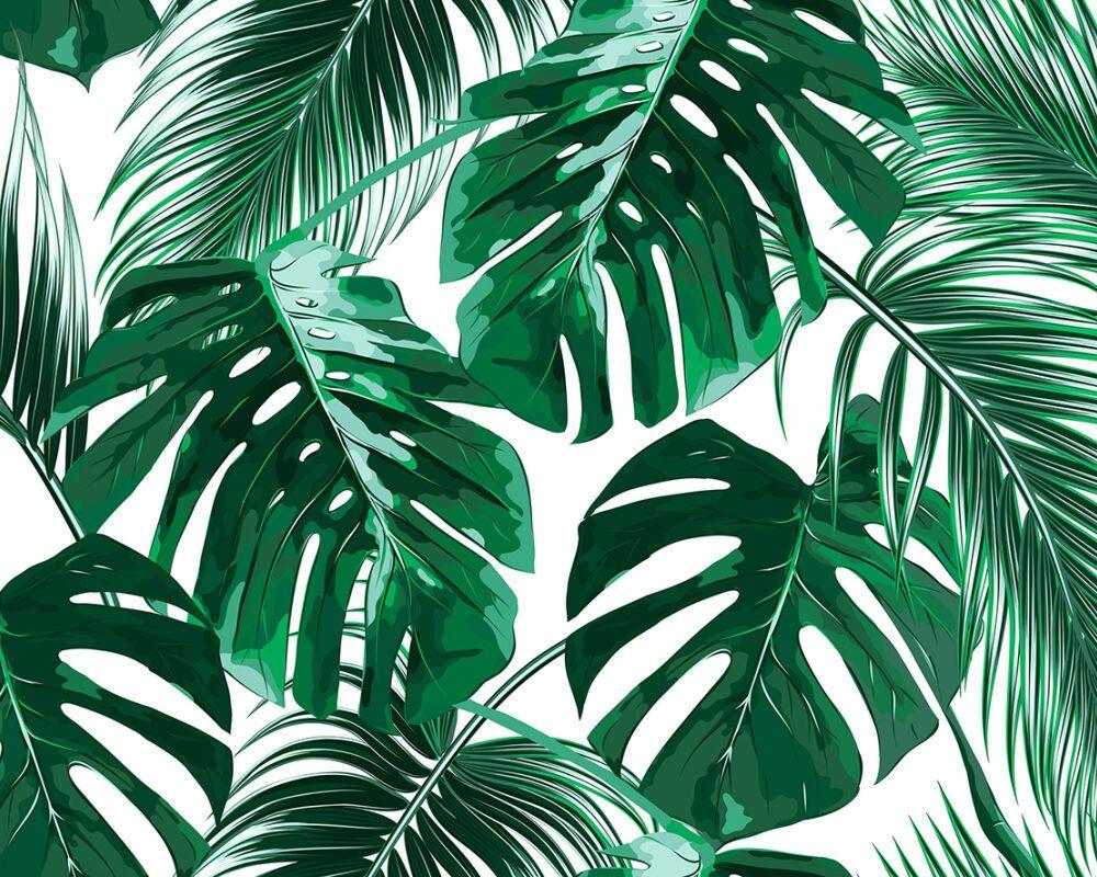 Murals Ireland Digital Wallpaper Murals Dublin Palm Trees Wallpaper Leaf Wallpaper Tree Wallpaper