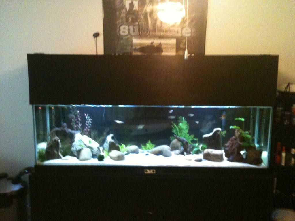 DIY aquarium canopy : canopy for fish tank - memphite.com