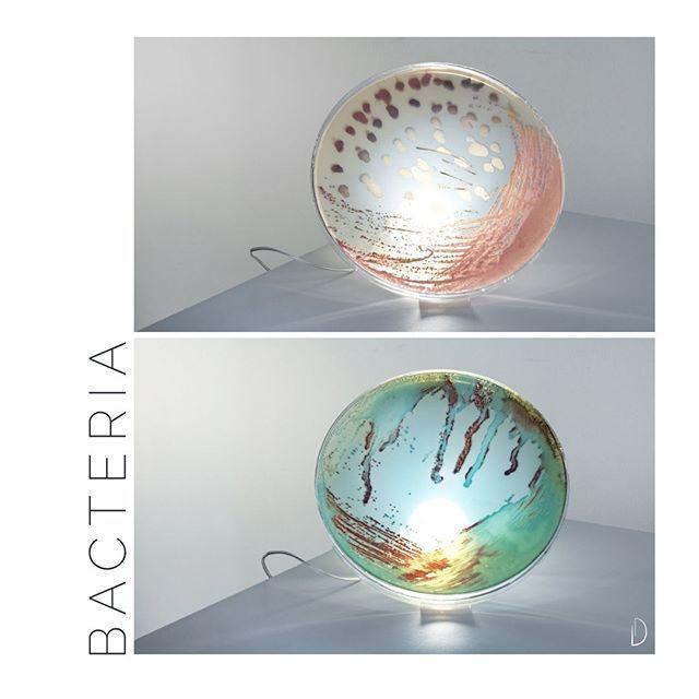 Biophilic & Sustainable Interior Design · Organic Design