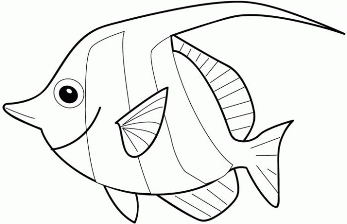 Sea Fish Fish Coloring Page Coloring Books Disney Coloring Pages