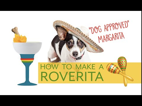 Best Friends At Home How To Make A Roverita Dog Approved Margarita Youtube In 2020 Best Friends Pets Dogs Pet Hotel