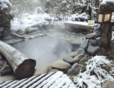 Kamesei Ryokan (Hot Springs) in Nagano