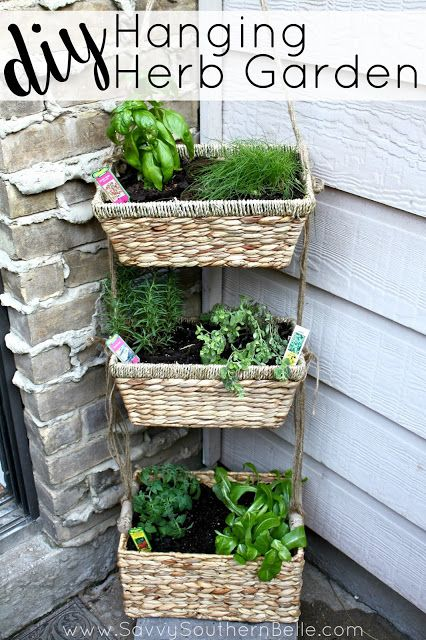Diy hanging herb garden herbs garden small spaces and herbs for Apartment patio garden design ideas