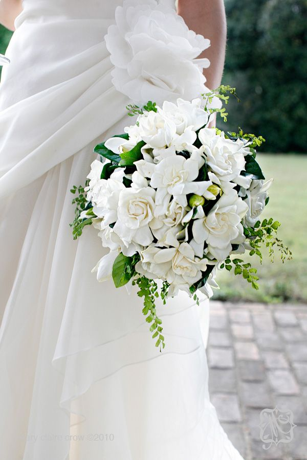 I So Wish I D Seen This Before I Got Married I Love White Roses But Gardenias Smell Wonderful With Images Gardenia Wedding Bouquets Gardenia Wedding Wedding Bouquets
