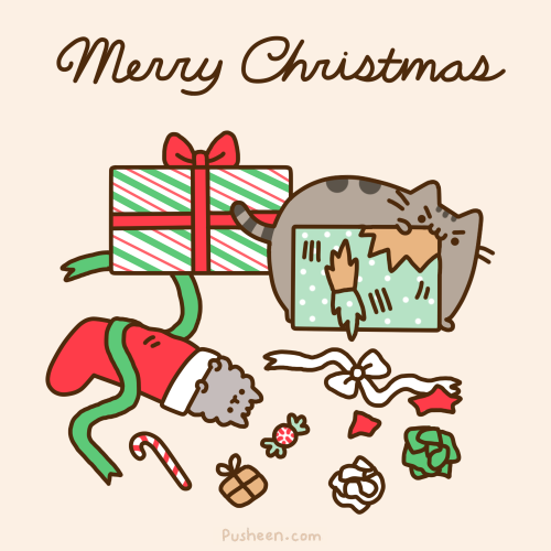 Pusheen the cat on | Pusheen, Pusheen christmas and Pusheen cat