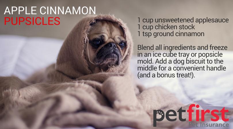 Apple Cinnamon Pupsicles Pug Dog Pugs Dogs