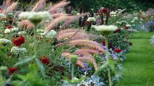 Schwedischer Garten Google Suche Botanical Gardens Tropical Greenhouses Planting Succulents