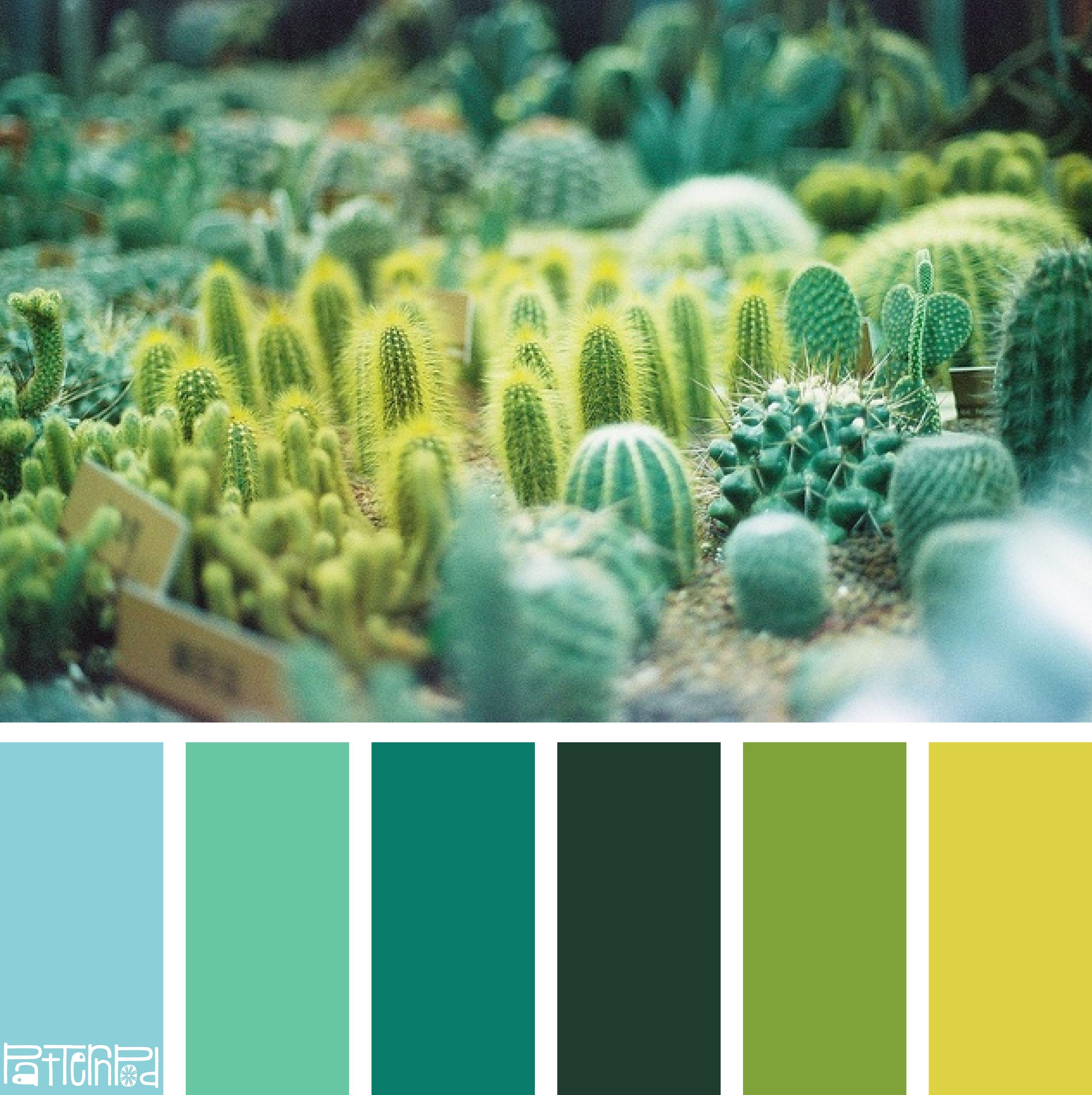 Consejos y herramientas para elegir una paleta de color - Paletas de colores para paredes ...
