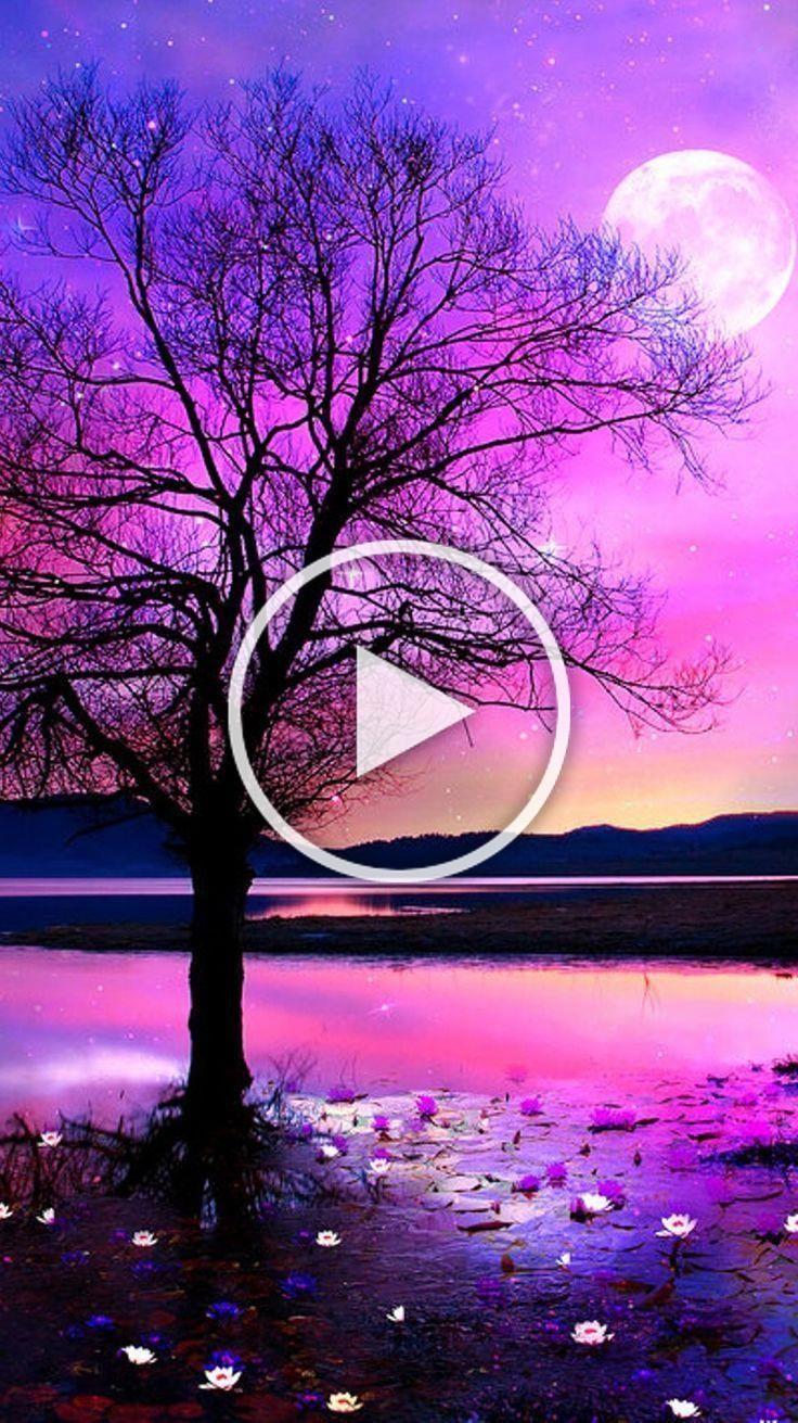 natur Baggrundsbilleder iPhone Android Smukke