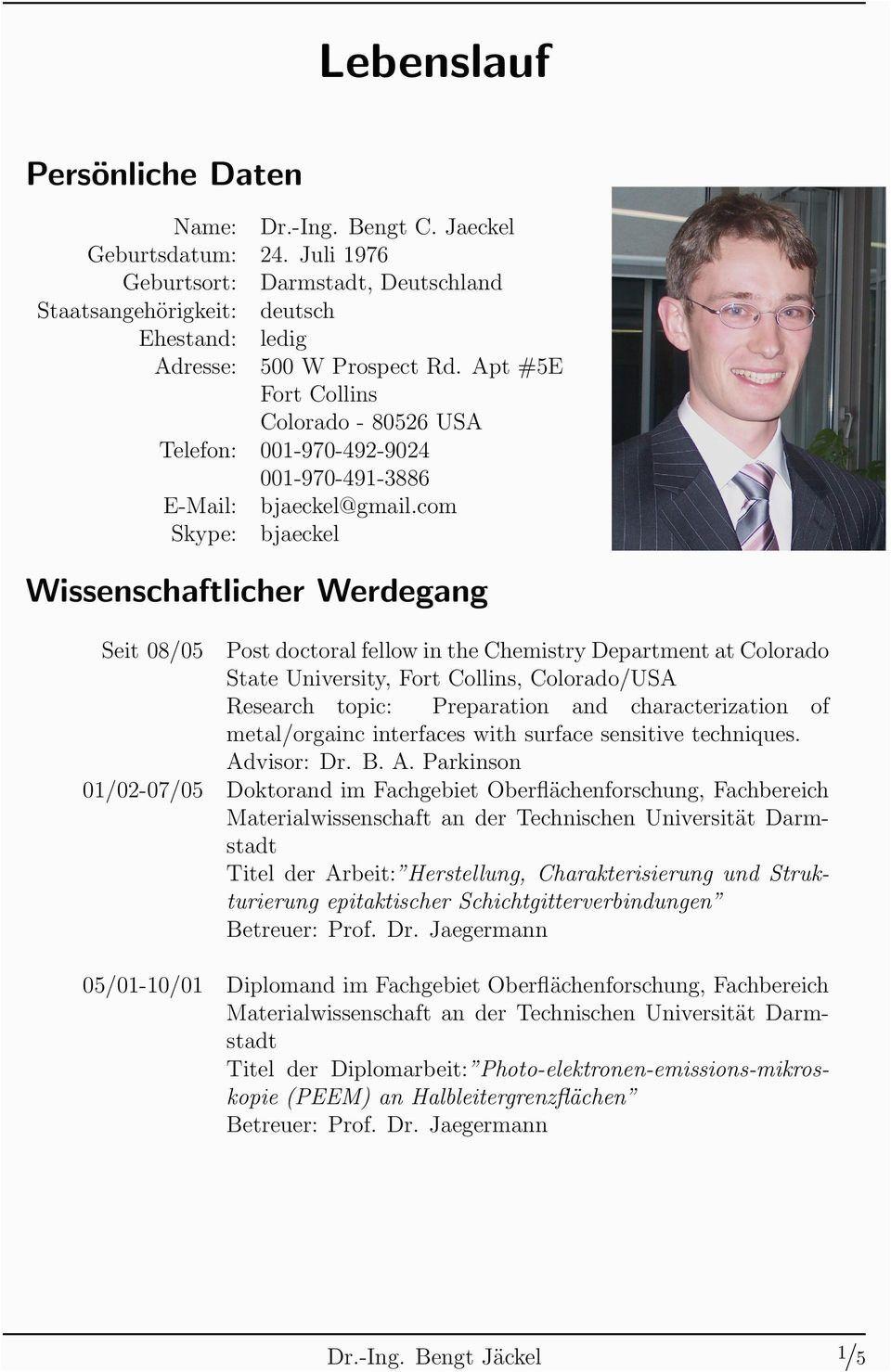 Wissenschaftlicher Lebenslauf Deutsch Lebenslauf Perfekter Lebenslauf Lebenslauf Muster