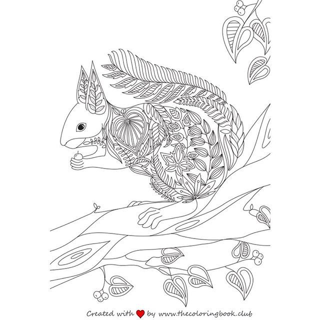 We've created a beautiful coloring page of a cute squirrel