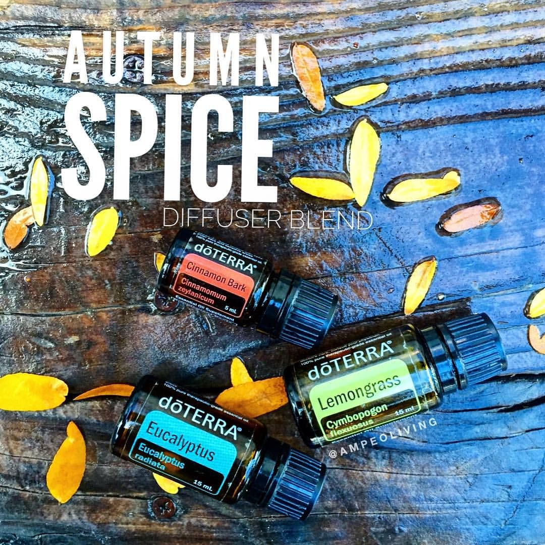 It's raining again this morning. I am cuddling sis while answering emails in bed. () Diffusing right next to us is this delicious spicy fall blend. I am LOVING it. It smells like fall, but also promotes  wonderful healthy breathing!  ••••••••••••••••••••••••••••••••••••••••••••••••••••• 2 drops Eucalyptus  1 drop Lemongrass 1 drop Cinnamon •••••••••••••••••••••••••••••••••••••••••••••••••••••• What are you diffusing today? Share with me!