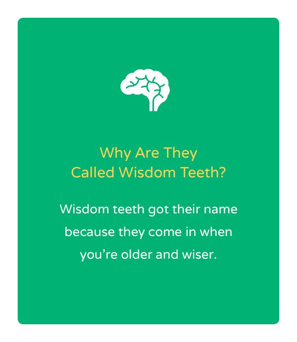 Fun Fact Friday! Did you know that your teeth are unique? | Kool ...