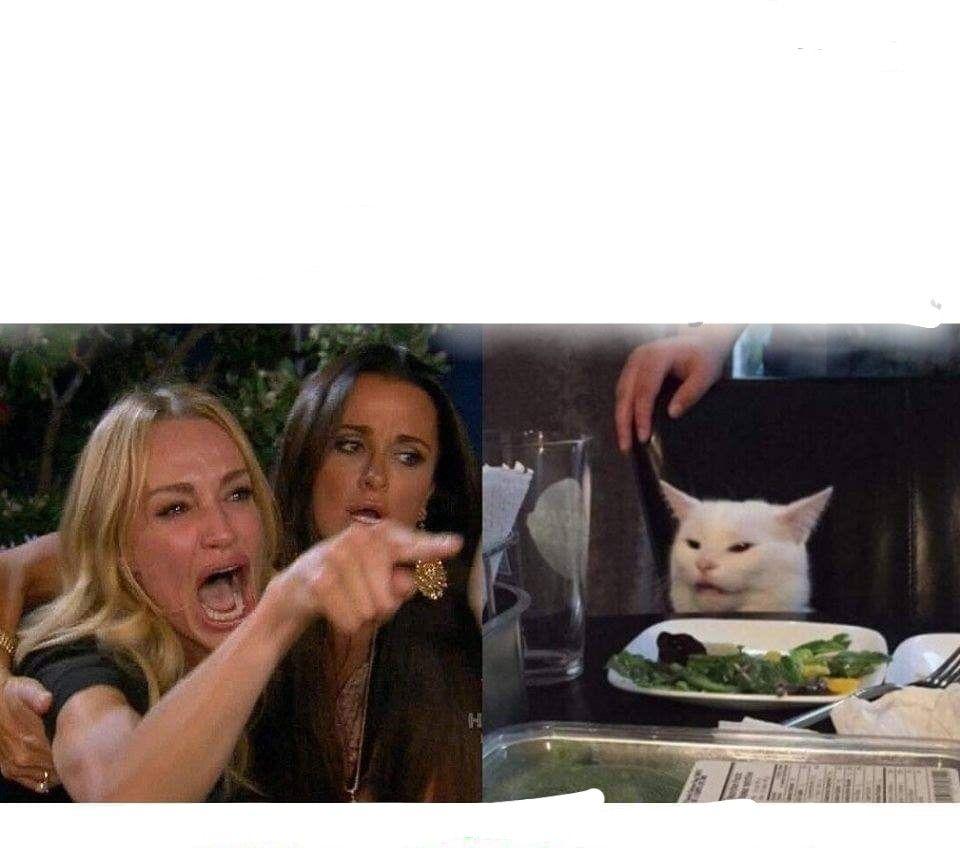 Plantilla De Meme Meme Gato Memes Originales Memes Para Crear