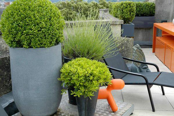 Contemporary Urban Rooftop Garden Design Terrazas, Paisajismo y Jardín - diseo de jardines urbanos