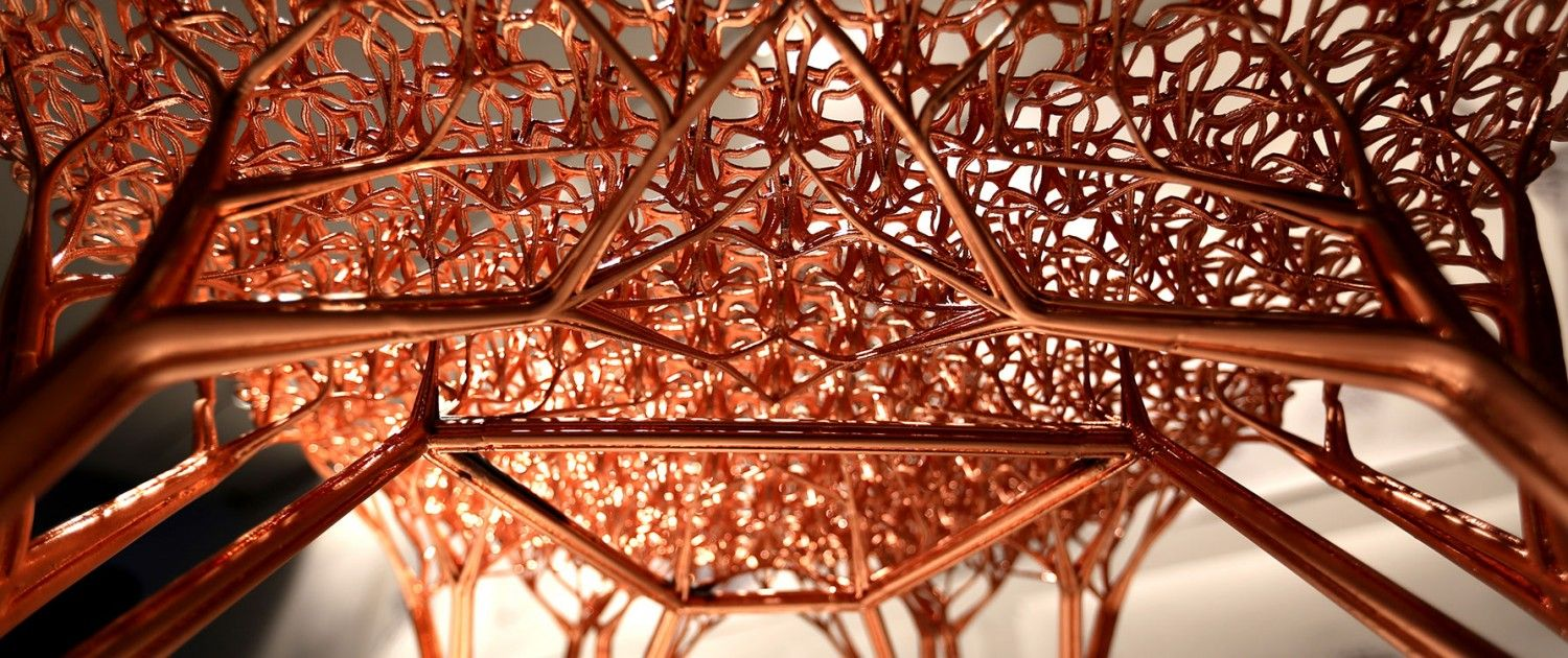 Joris Laarman and his team are fascinated by the latest technological developments, the endless possibilities it brings as well as its combination with old fashion craft skills. Examples of Joris Laarman Lab's works are among others the 3D printed bridge in Amsterdam and a vast variety of 3D printed chairs, of which the Adaption Chair is one of the latest.