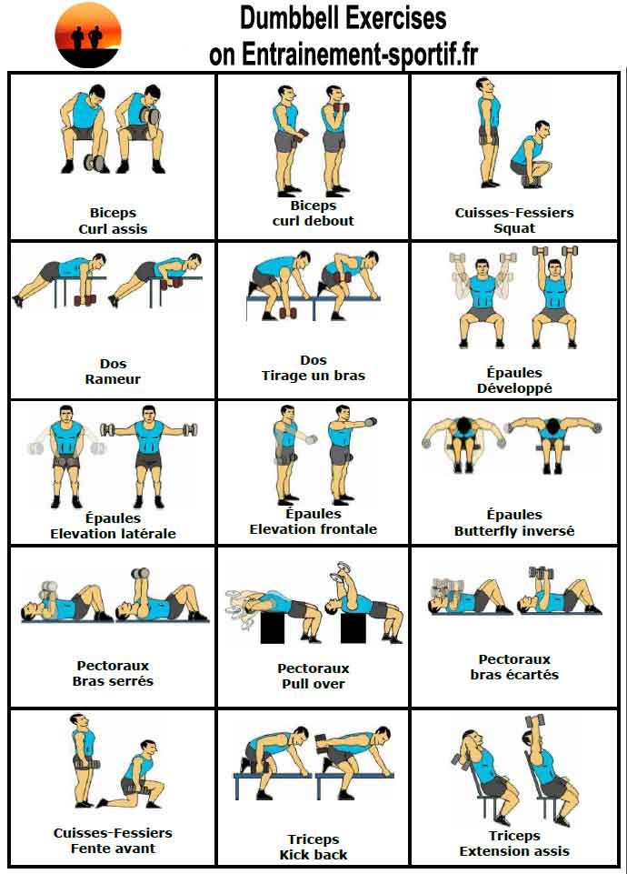 15 dumbbell exercises Exercice Musculation Haltere 33805782ef5