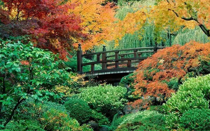 Giardini  giapponesi  in oregon