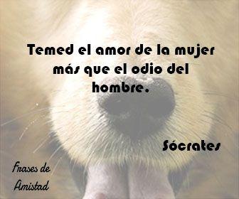 Frases Filosoficas De Amor De Socrates Pensamientos Pinterest